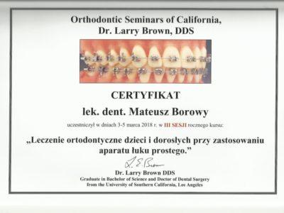 <span>lek. dent. Mateusz Borowy</span> Mateusz Borowy certyfikaty 11